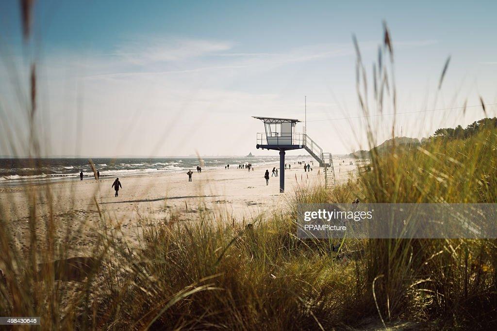 Lifeguard hut on the beach