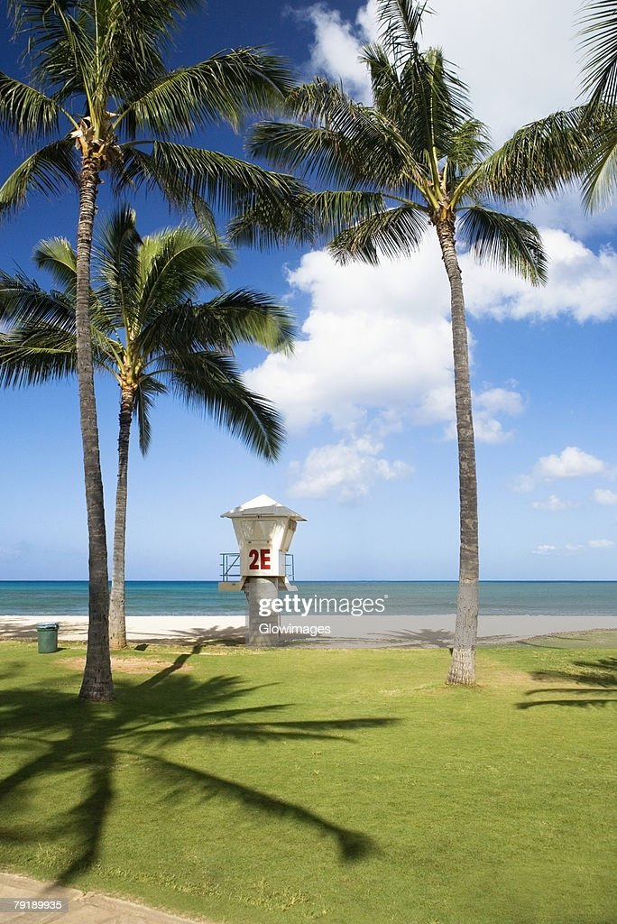 Lifeguard hut on the beach, Waikiki Beach, Honolulu, Oahu, Hawaii Islands, USA : Stock Photo