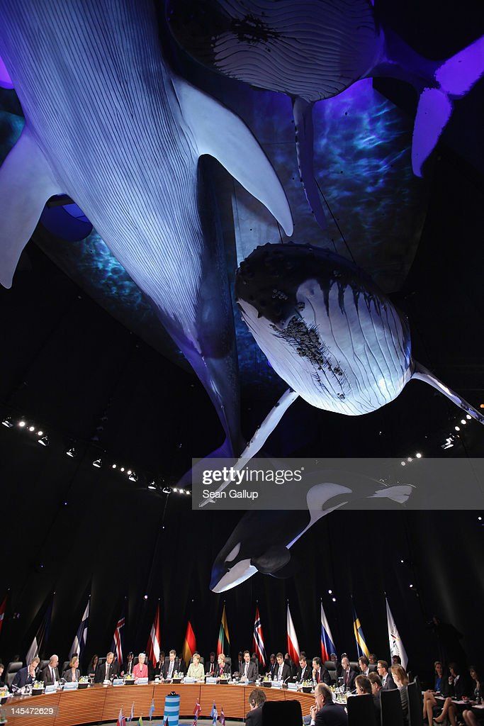 Life-scale models of whales hang over leaders of Baltic Sea nations at the opening of the 2012 Council of Baltic Sea States Summit at the Ozeaneum maritime museum on May 30, 2012 in Stralsund, Germany. Leaders of the eleven member states as well as representatives of the European Union are meeting to discuss matters related to energy, the environment and economic development during the two-day summit.