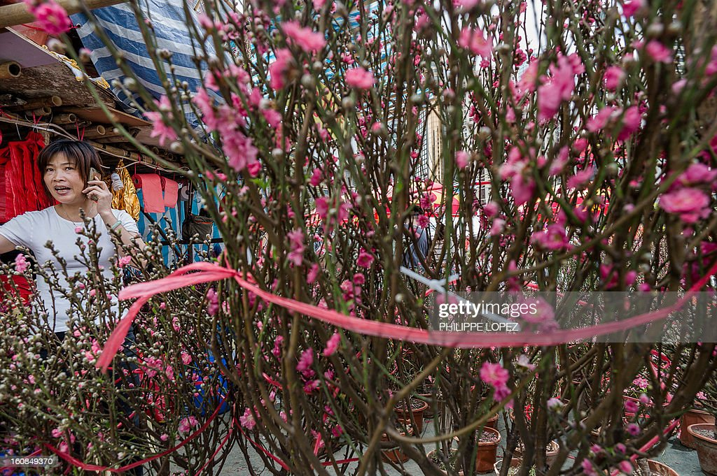 Lifestyle-Asia-offbeat-Lunar, FEATURE by Beh Lih Yi A woman talks on a mobile phone next tree blossoms displayed at a Chinese New Year fair in Hong Kong on February 5, 2013. A stock market slide, possible conflict between Japan and China and more Gangnam-styled success for South Korean singer Psy will shape the incoming Year of the Snake, say Asian soothsayers. AFP PHOTO / Philippe Lopez