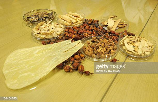 LifestyleSingaporeAsiahealthmedicine FEATURE by Bernice Han This photo taken September 6 2010 shows samples of dried medicinal plants barks and buds...