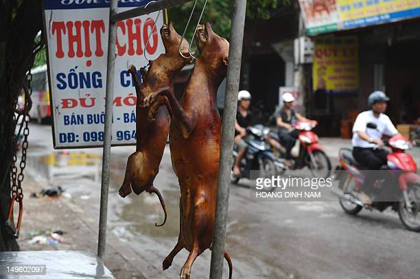 LifestyleVietnamsocietyanimalFEATURE by Tran Thi Minh Ha This photo taken on July 26 2012 shows slaughtered dogs hanging up for sale in front of a...