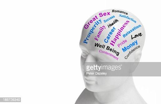 Lifestyle/wellbeing phrenology head