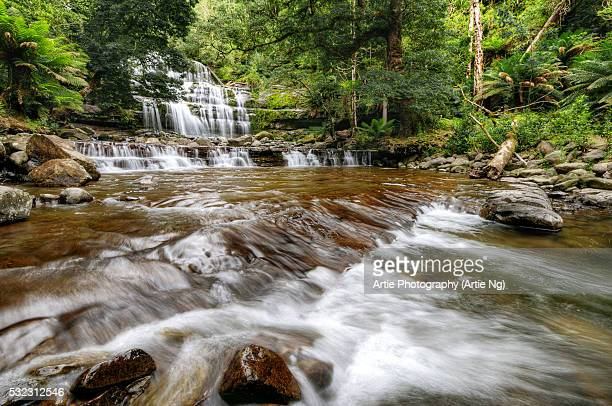 Liffey Falls in the Great Western Tiers, Midlands Region of Tasmania, Australia