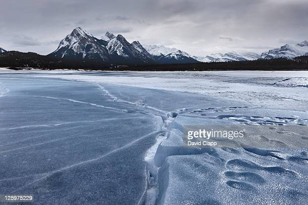 Lifted ice plates on frozen river on the Kootenay Plains, Abraham Lake, Canadian Rockies, Alberta, Canada