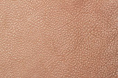 Light brown leather texture surface. Close-up of natural grain cow leather Light brown leather texture surface. Background