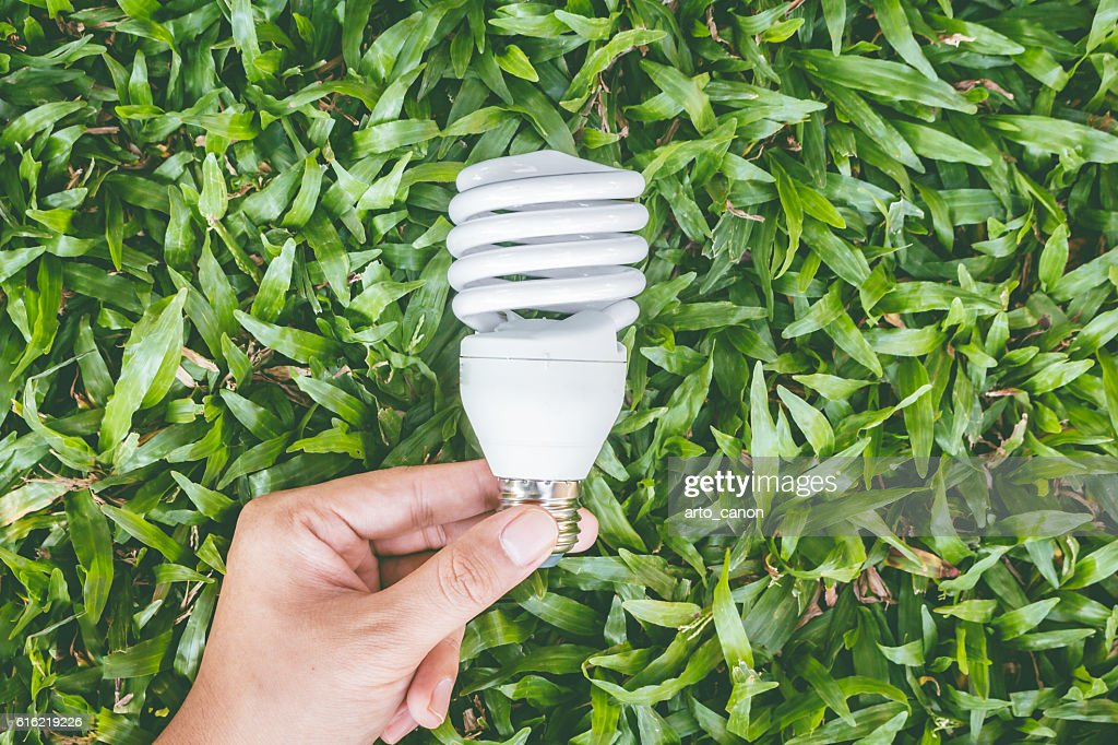 Light bulb in hand with energy saving eco lamp : Stock Photo