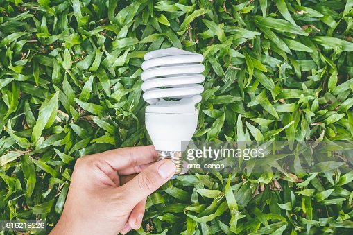 Light bulb in hand with energy saving eco lamp : Photo