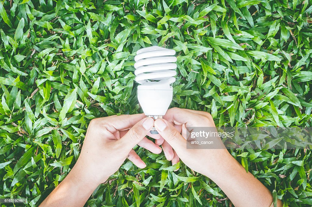 Light bulb in hand with energy saving eco lamp : Stock-Foto