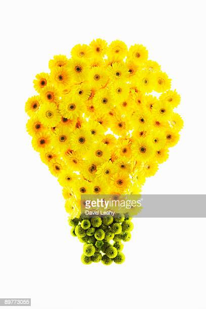 A light bulb made out of flowers