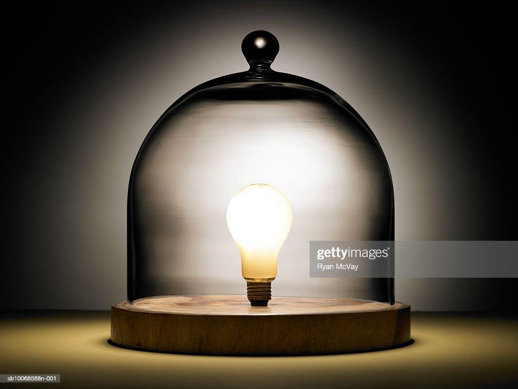 Light bulb under glass dome : Stock Photo