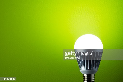 LED light bulb with metal casing