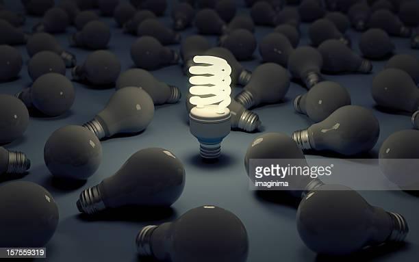 Glühbirnen-fluoreszierend gegen glühende