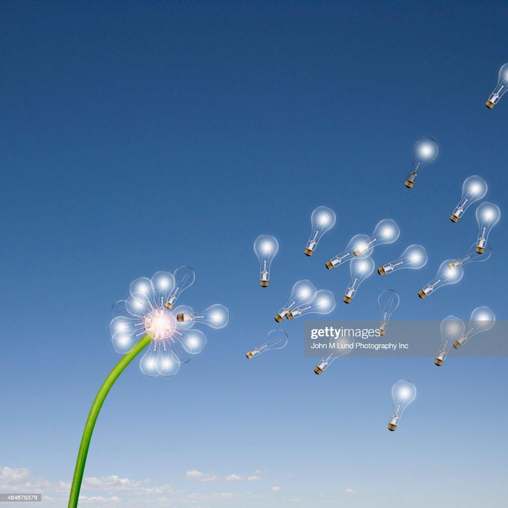 Light bulbs flying off dandelion