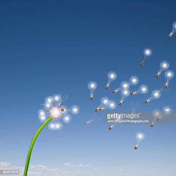 Light bulbs flying off dandelion