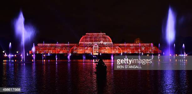 A light display in pictured on the Palm House during a photocall at Kew Gardens in south west London on November 24 during their launch of the...