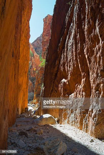 Light enters narrow Stanley Chasm, Australia