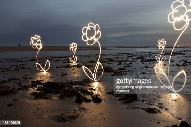 Light painting photography flowers on beach