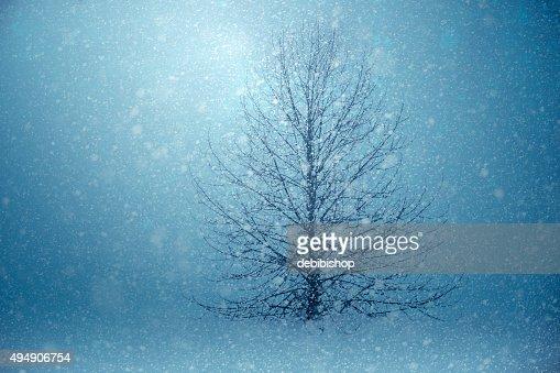 Light Shining Through The Winter Snow Storm