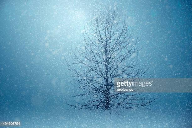 Lumière qui brille à travers de la tempête de neige en hiver