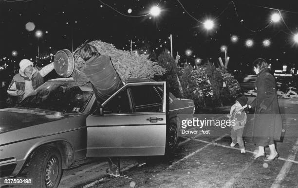 Light snow was falling Eric Trout and his mom buying a Christmas Tree at the Greenland Lot at Sears Cherry Creek Jed Villa and Carl Benchek tie the...