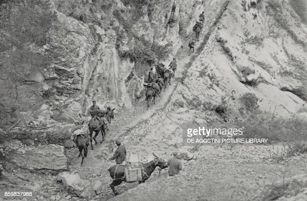 A light supply column climbing the mountain to reach the great Bersaglieri guard World War I from L'Illustrazione Italiana Year XLII No 35 August 29...