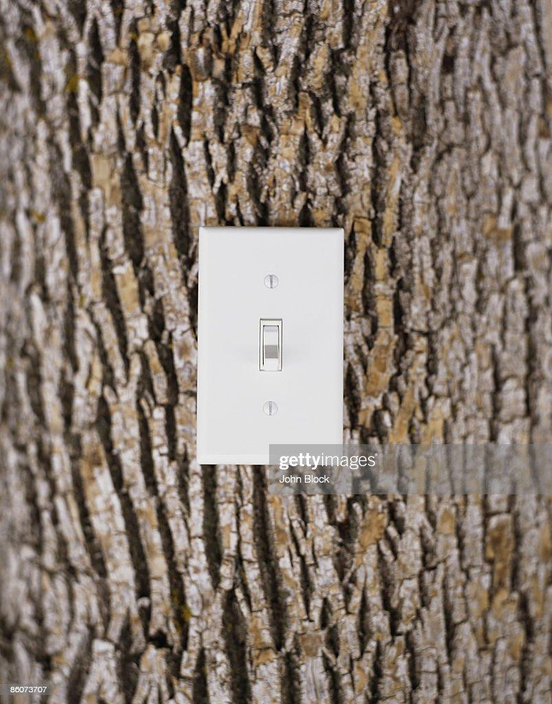 Light switch on tree trunk