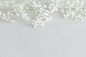 Winter background with baby's breath and copy space