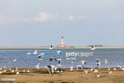 Lighthouse of Westerhever, Germany : Stock Photo