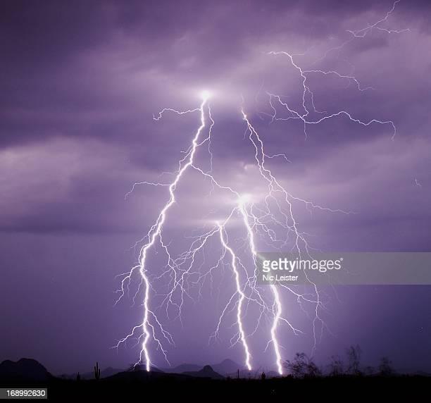 Lightning Strikes in the Sonoran Desert