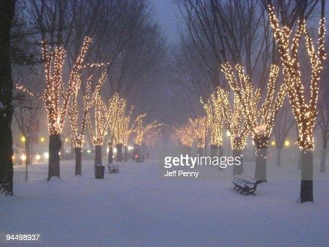 Lights : Stock Photo