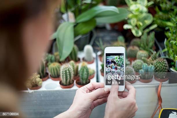 I like this cactus