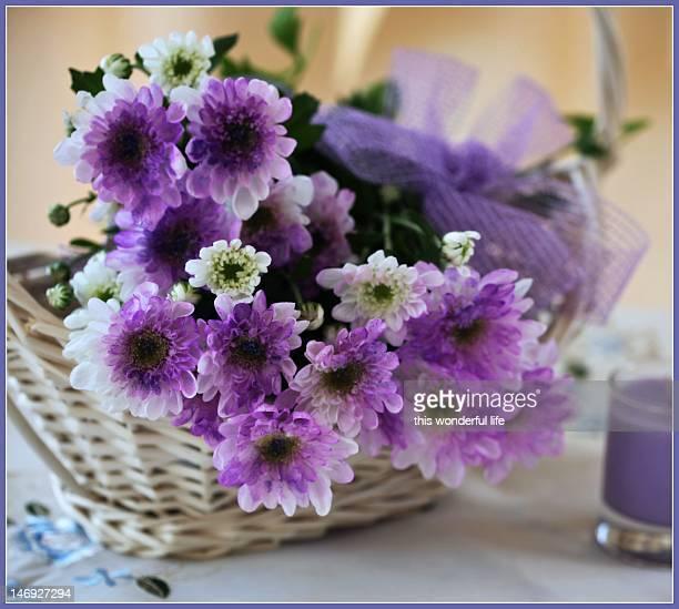 lilac flower in basket
