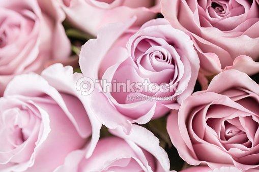 Lila Rose De Jardin Bouquet De Fleurs De Roses Dans Un Vase De Verre ...