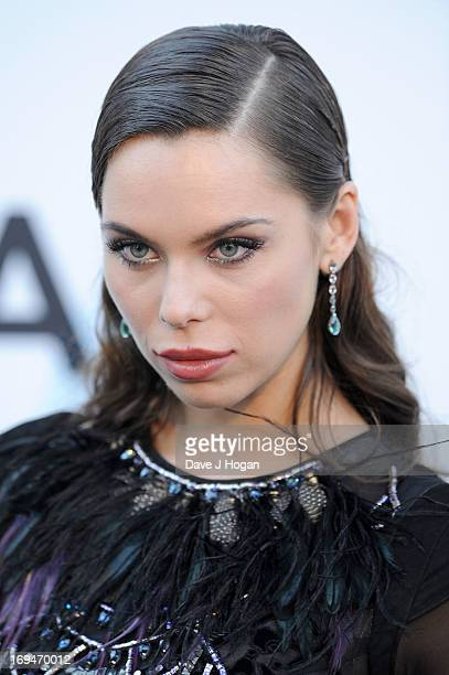 Liliana Matthaeus attends amfAR's 20th Annual Cinema Against AIDS during The 66th Annual Cannes Film Festival at Hotel du CapEdenRoc on May 23 2013...