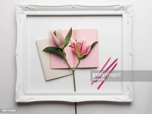 lilies displayed creatively in a white picture frame on top of an open pink notebook with pink coloured pencils