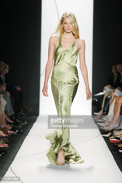 Lily Donaldson wearing Vera Wang Spring 2005 during Olympus Fashion Week Spring 2005 Vera Wang Runway at Theater Tent Bryant Park in New York City...