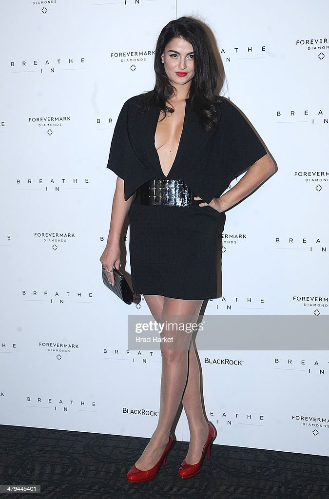 Lily Lane attends the 'Breathe In' premiere at Sunshine Landmark on March 18, 2014 in New York City.