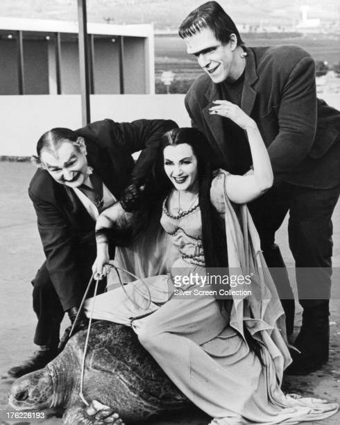 Lily Munster played by Yvonne De Carlo rides a giant turtle in a publicity still for the comedyhorror TV series 'The Munsters' circa 1965 With her...