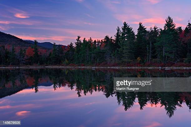 Lily pond at sunset in autumn