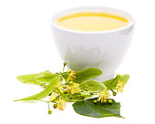 lime blossom tea with fresh flowers on white background