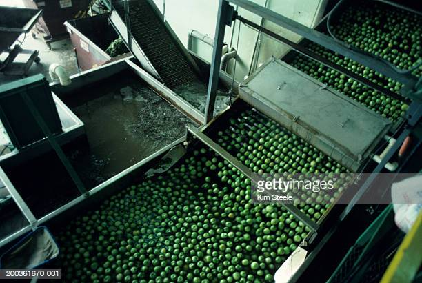 Lime capital of the world; limes being processed in plant for juice, elevated view