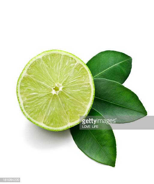 Lime cut in half against a white background