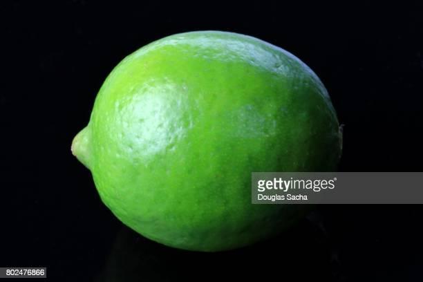 Lime Fruit on a black background (citrus aurantiifolia)