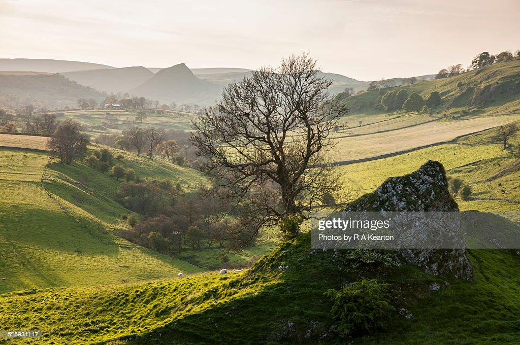 Limestone crag at Pilsbury castle, Peak District