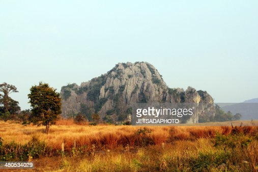 limestone mountain in the fields. : Stock Photo
