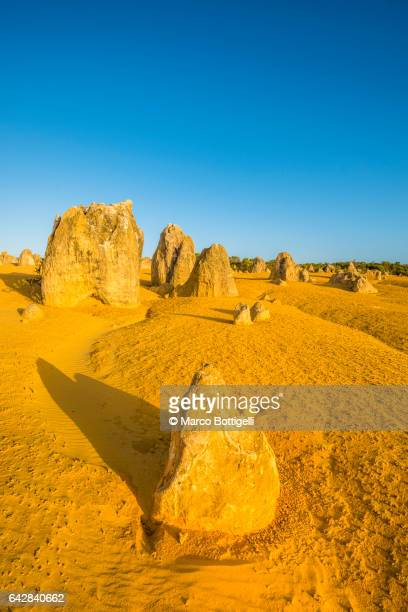 Limestone rock formations at Pinnacle desert national park, Western Australia.