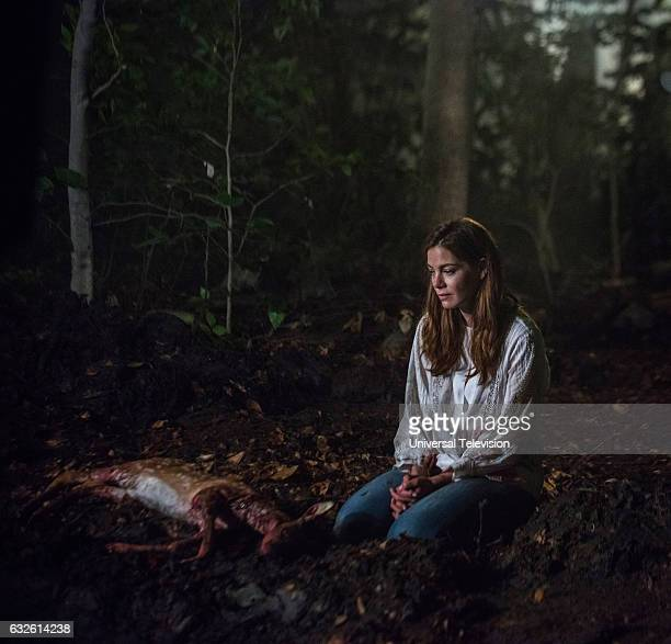 THE PATH 'Liminal Twilight' Episode 201 Pictured Michelle Monaghan as Sarah Lane