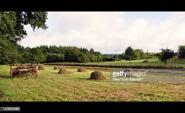 Limousin countryside