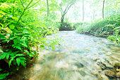 Limpid stream